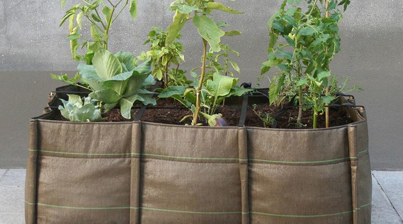 Jardinière de légumes bonne ou mauvaise idée